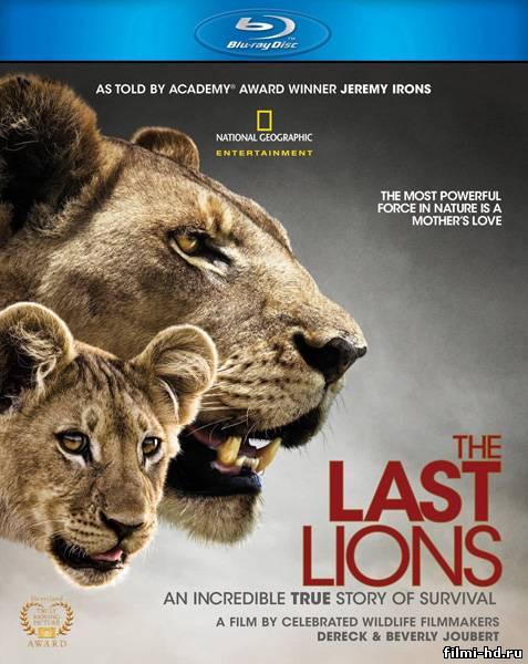 Последние львы / The Last Lions (2011) Смотреть онлайн бесплатно