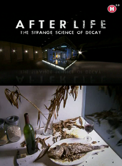 После Смерти: Странная Наука Разложения (2011) Смотреть онлайн бесплатно