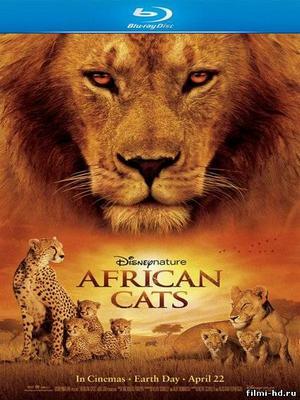 Африканские кошки: Королевство смелости (2011) Смотреть онлайн бесплатно