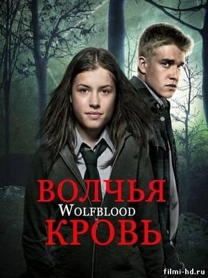 Волчья кровь 2 сезон (2013) Смотреть онлайн бесплатно
