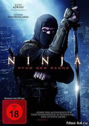 Ниндзя 2 (2013) Смотреть онлайн бесплатно
