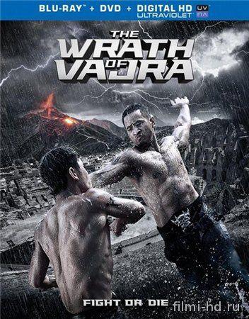 Гнев Ваджра (2013) Смотреть онлайн бесплатно