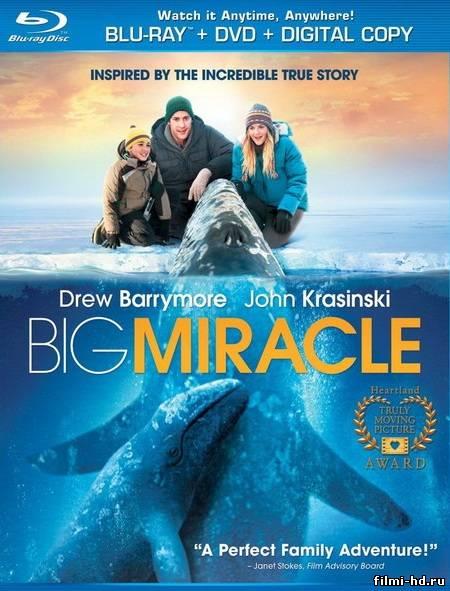 Все любят китов (2012) Смотреть онлайн бесплатно