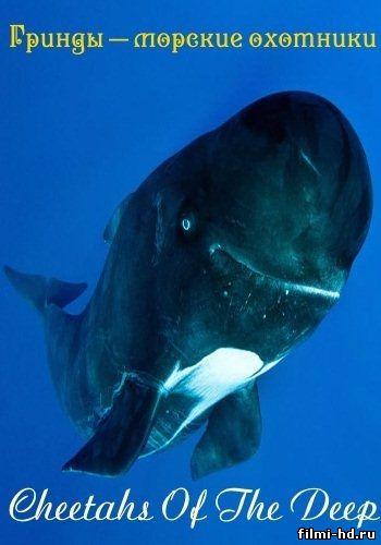 Гринды – морские охотники (2013) смотреть онлайн