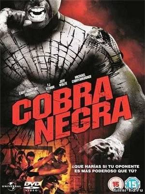 Черная кобра (2012) Смотреть онлайн бесплатно